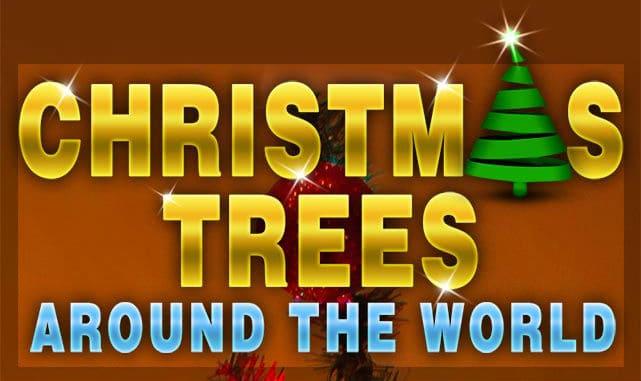 Real Live Christmas Trees