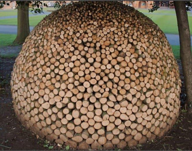 stacking-firewood-toemar-michael-buck